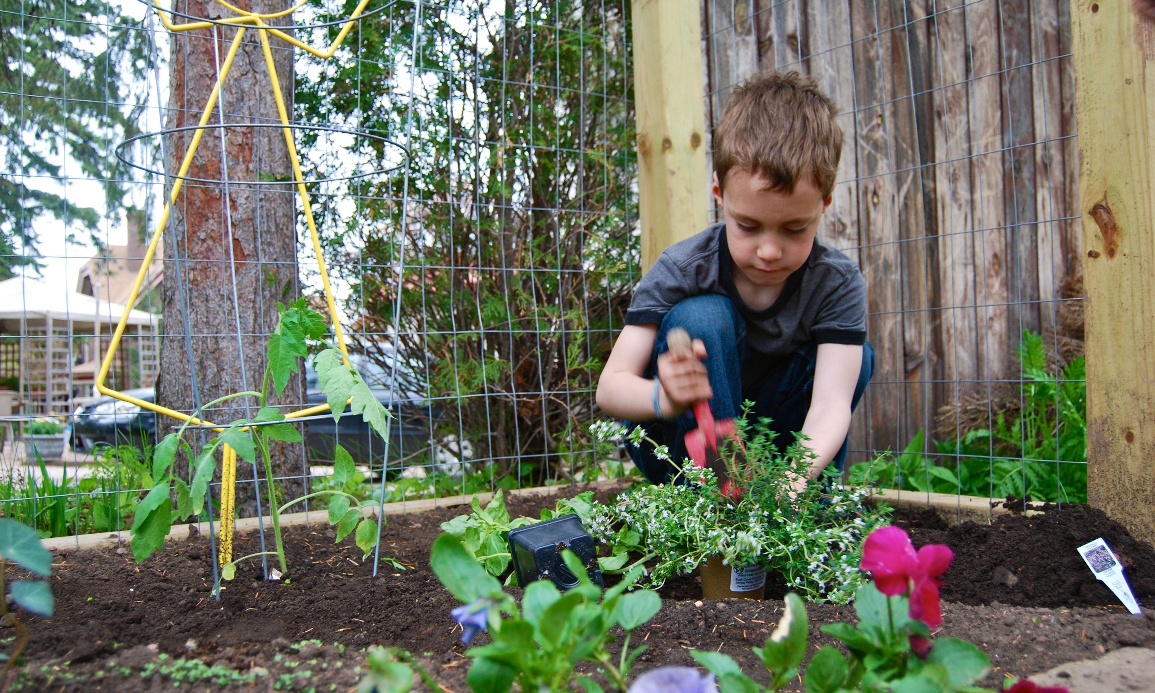 Summer fun gardening for kids mystical magical herbs for Gardening with children