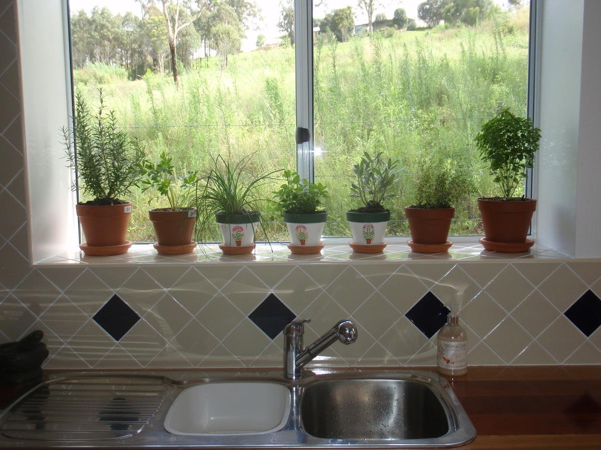 Kitchen Herb Garden Planter Growing Herbs Indoors Mystical Magical Herbs