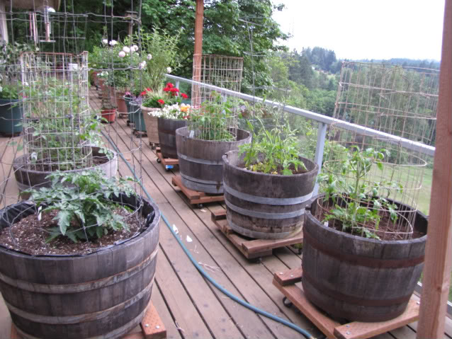 Vegetable Garden Containers Ideas: April In The Herb Garden