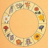 herbs of zodiac 1